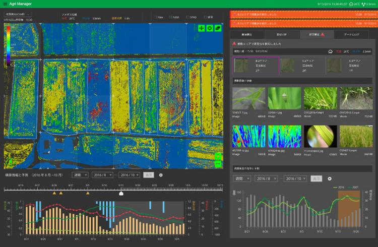 ドローン農薬散布のための空撮画像と、AI画像解析の実際の様子。※画像提供:株式会社オプティム