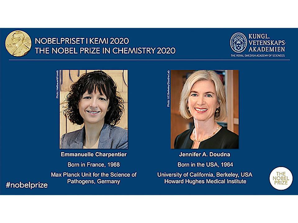 今年のノーベル賞【後編】化学賞の欧米女性2氏 プエルトリコで運命的な出会い、共同研究へ