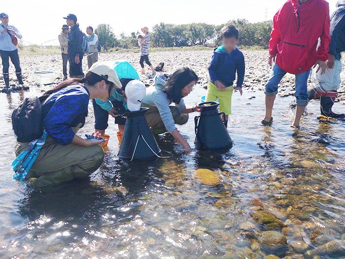 広瀬川の環境を学ぶ「広瀬川楽校」プロジェクトに参加する伊藤さん(=中央、伊藤さん提供)