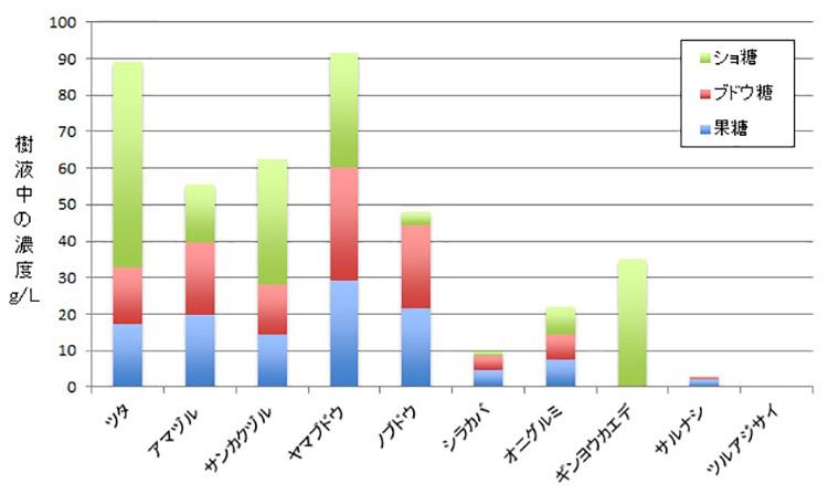 樹液の糖分の比較。ブドウ科(左の5種)はいずれも、比較のため調べたメイプルシロップの原料にもなるギンヨウカエデを上回った。シラカバ、オニグルミ、サルナシも比較用(神松さん提供)