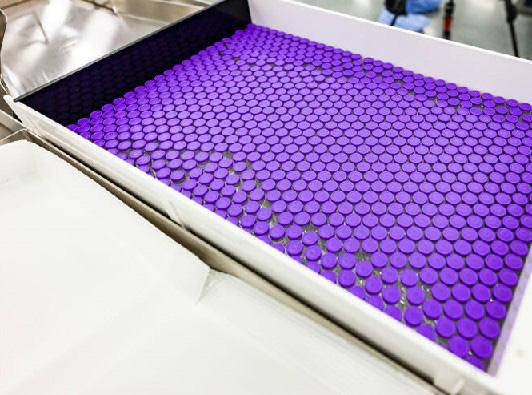 米製薬大手ファイザーとドイツのバイオ企業ビオンテックが開発したワクチン(米ファイザー提供)