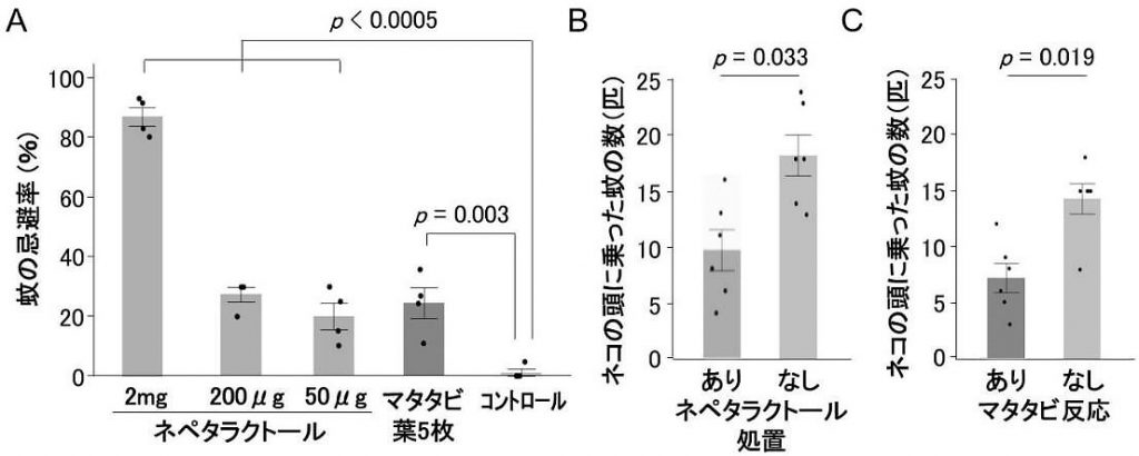 蚊がネペタラクトールを忌避するか調べた実験の結果(岩手大学提供)