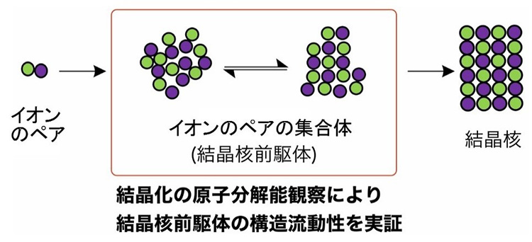 結晶核ができる過程の模式図。イオンのペアの集合体は、結合が不明瞭な状態や不安定に結合した状態を繰り返した(東京大学提供、一部改変)