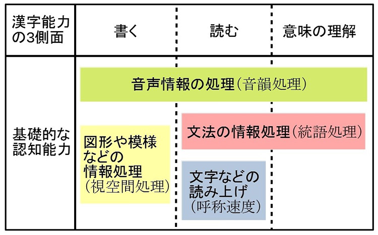 漢字能力の3つの側面とそれぞれに関わる基礎的な認知能力。子供一人一人が漢字習得の何につまずいているのか、考えることが大切だ(京都大学の資料を基に作成)