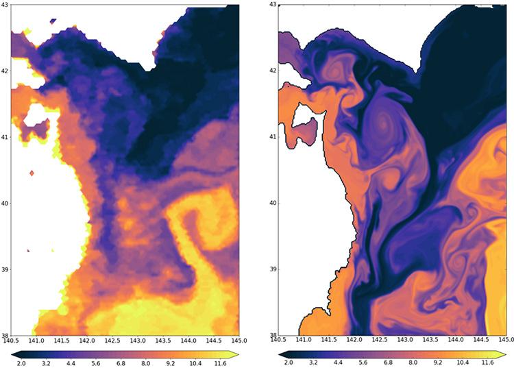 アメリカ海洋大気庁(NOAA)が観測した衛星海面水温(左)と、三陸沖の高解像度海洋モデル(THK50)で再現された最上層水温(右)の比較。いずれも2004年4月15日時点を示すもの。白地は陸地。津軽海峡から流出する津軽暖流水、道東沿岸から岩手沿岸へと南下する親潮が再現されている(提供:TEAMS)