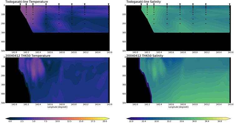 岩手県水産技術センターの沿岸定線観測結果(トドヶ埼沖)との比較。上が観測、下が高解像度海洋モデル(THK50)による再現結果。左が水温、右は塩分を表す。いずれも2004年4月時点を示すもの。縦軸は深さ(メートル)で、横軸は経度。岩手県沿岸から15海里程度まで、高温高塩な津軽暖流水が厚さ250メートル程度で存在し、その外洋側に親潮が流入する様子が再現されている(提供:TEAMS)