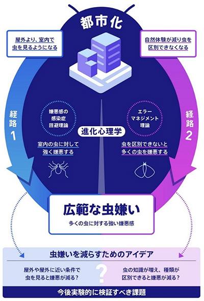 この研究のまとめ(東京大学提供)