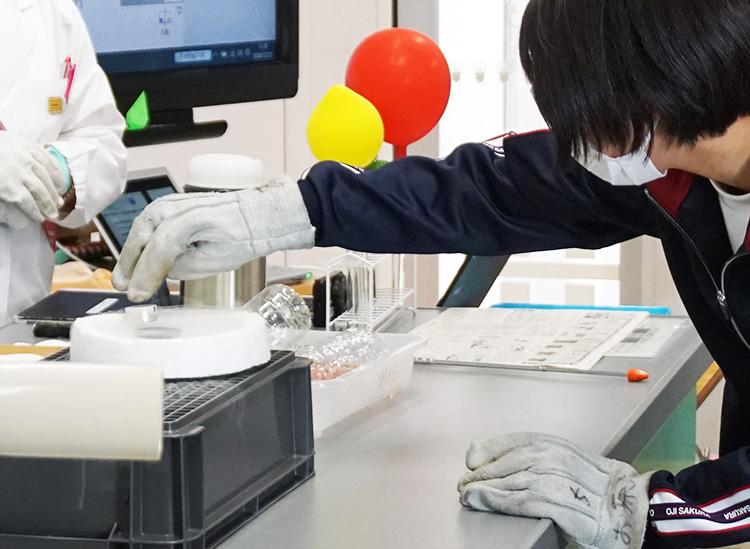 2020年12月に北区立王子桜中学校で実施した液体窒素の実験の様子。超伝導体のピン止め効果を観察中(SEC提供)