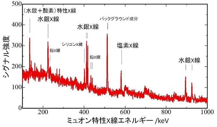 ミュー粒子のビームを薬瓶に打ち込んで記録された元素。水銀と塩素は中身の薬剤に、鉛とシリコン、酸素は瓶に由来する(大阪大学提供)