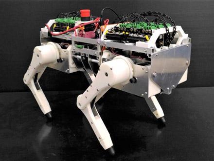 ネコ型ロボットを開発し、「反射」で歩く仕組みを解明 阪大