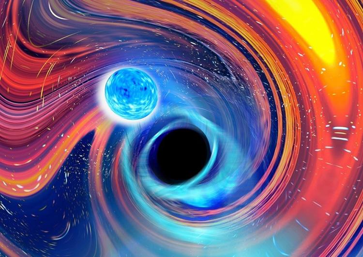 ブラックホールと中性子星が合体して重力波が発生する現象の概念図(オーストラリア・スウィンバーン工科大学カール・ノックス氏提供)
