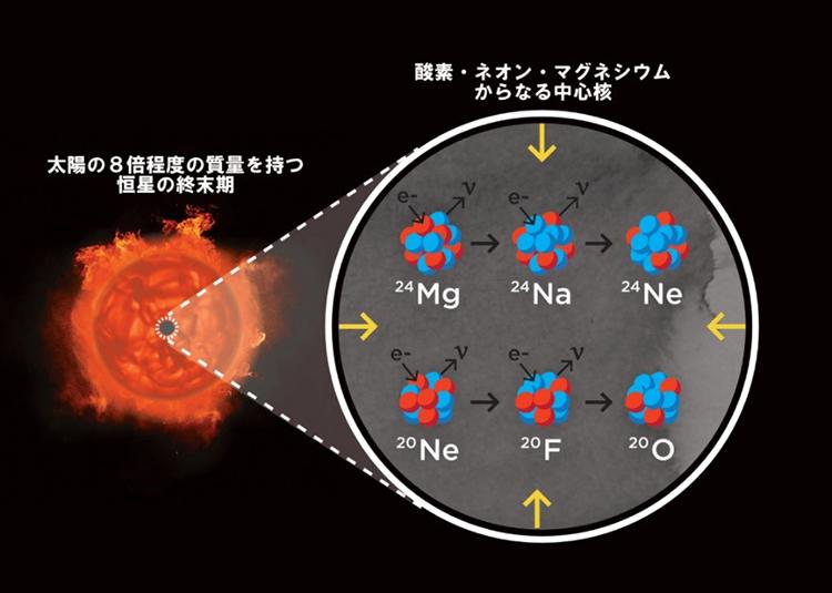 電子捕獲型超新星となる星の内部で起こると考えられる反応の模式図(ラスクンブレス天文台・S.ウィルキンソン氏提供)
