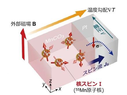 原子核の自転「核スピン」による熱発電現象を発見 東大など