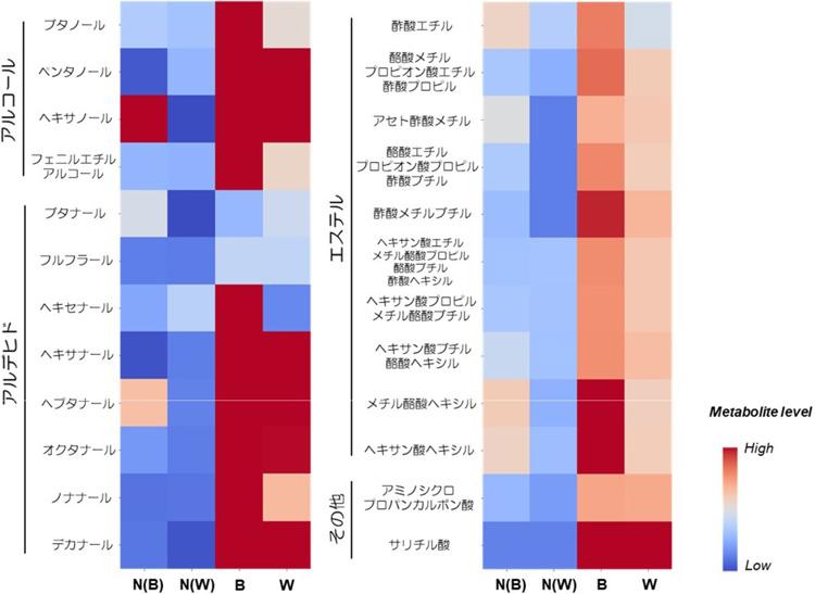 細胞内の揮発性物質の濃度。Bは蜜入りリンゴの境界部分、Wは蜜部分。N(B)とN(W)は比較のために調べた蜜なしリンゴの、それぞれ相当する部分(愛媛大学提供)