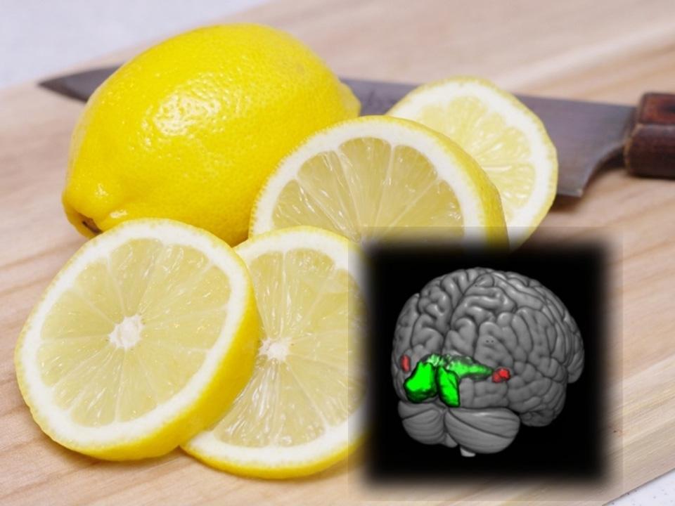 「レモンやバニラの香りに効果あり」と聞くと、食欲やリラクゼーションなどにまつわる話かと多くの人が