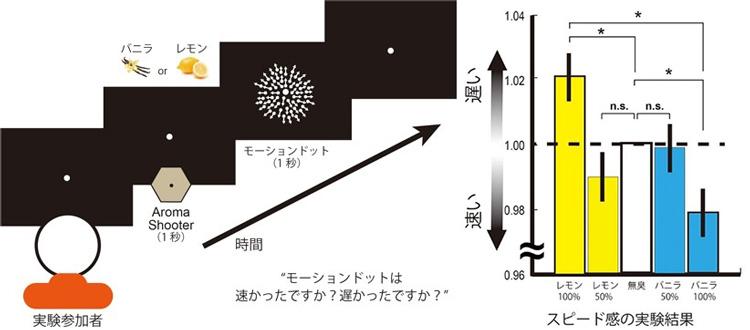 心理物理実験の概要(左)と結果。香りのついた空気を鼻に噴射した後、多数の点が動く映像を見てもらった。レモンの香りがすると映像の動きが遅く、バニラだと速く感じられた(情報通信研究機構提供)