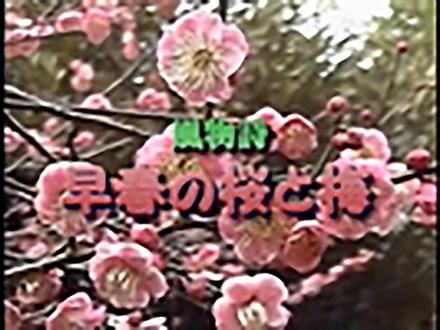 いきもの歳時記 (30)特集〜早春の野鳥観察