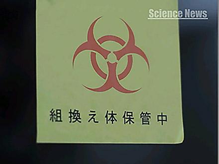 サイエンスニュース2011(新着情報) (37)遺伝子組み換え作物の現状と課題
