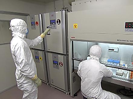 サイエンスニュース2014 より身近な再生医療へ iPS細胞ストックプロジェクト(2015年4月8日配信)