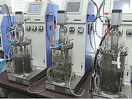 サイエンスニュース2016 微生物で資源を回収 メタルバイオテクノロジー(2016年5月11日配信)