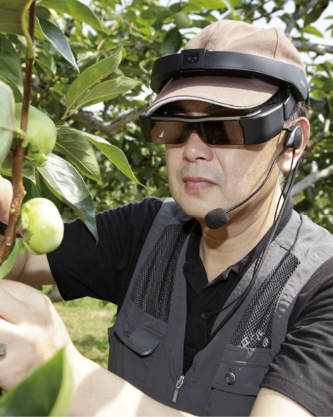 アイカメラで撮影した収穫の様子を見ながら、遠隔地の熟練農家がアドバイスする「遠隔作業支援サービス」画像提供:オプティム