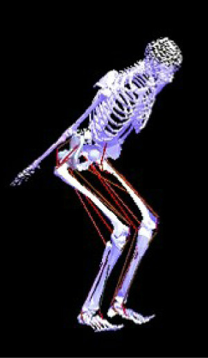 筋電計で筋肉の電気活動を計測し、体の動きと筋活動を照らし合わせて動きの仕組みを探る 画像提供:東京大学スポーツバイオメカニクス研究室