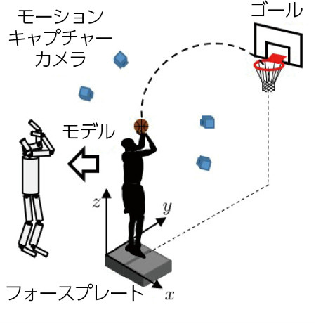 モーションキャプチャーやフォースプレートで収集した選手の動きを解析して、コンピューター上にモデルを作り出す。そのモデルを動かすことで、さまざまな動作を検証することができる 画像提供:東京大学スポーツバイオメカニクス研究室