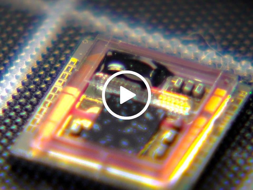 光ピン実用化へ アカデミア発の次世代光インターコネクション